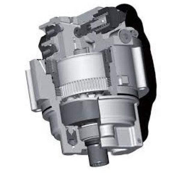 JCB 1105 Reman Hiflow Hydraulic Final Drive Motor #2 image